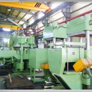 Forming and vulcanizing facility