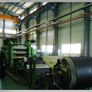 Raw material manufacture facility